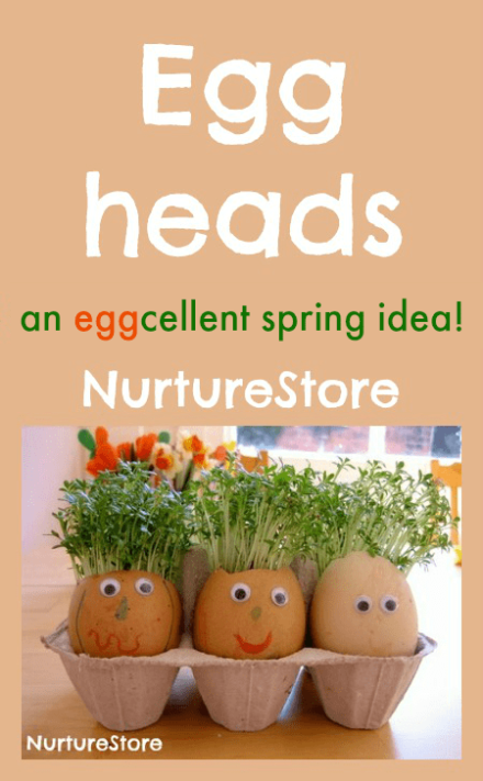 eggheads-cress-hair1